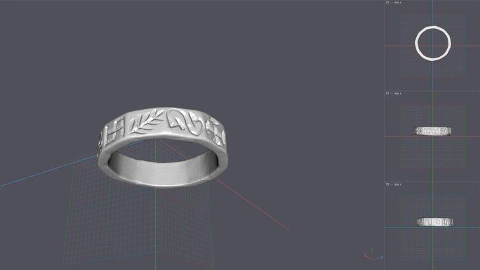 Auf Basis dieses 3D-Modells werden die neuen Ringrepliken erstellt. © Landesamt für Denkmalpflege und Archäologie Sachsen-Anhalt.