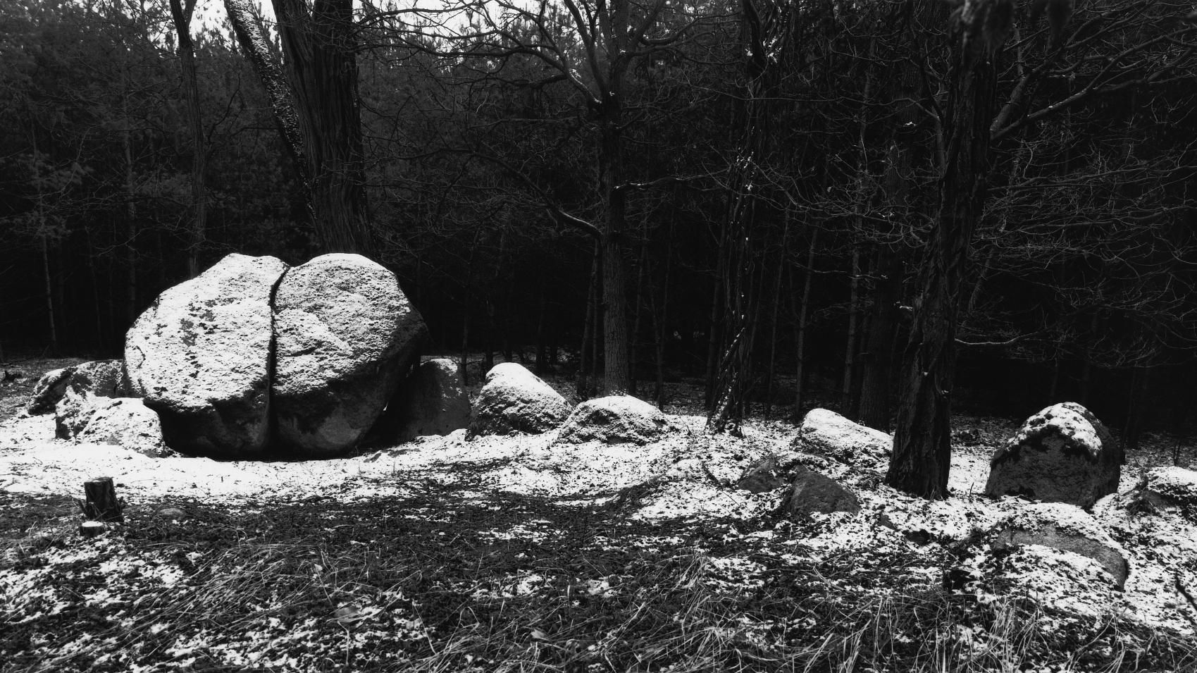 The large dolmen from Hohenwulsch-Friedrichsfleiss, site 1, in the district of Stendal. © State Office for Heritage Management and Archaeology Saxony-Anhalt, Juraj Lipták.