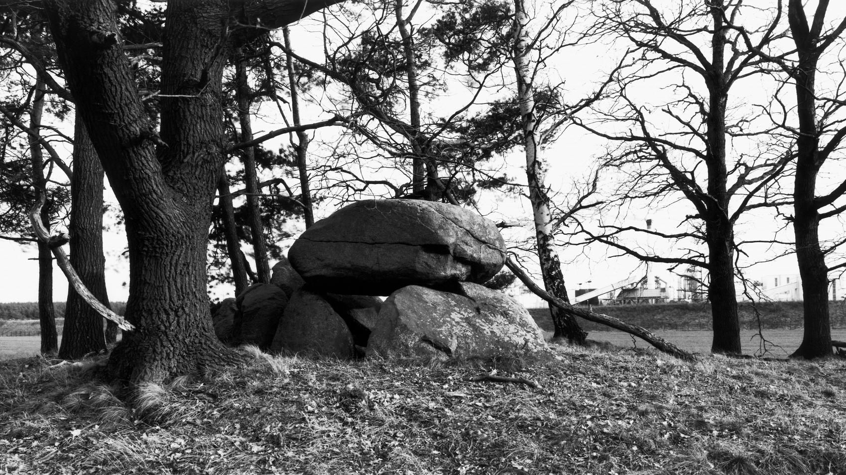 The large dolmens from Nettgau, site 1, in the Altmark district of Salzwedel. © State Office for Heritage Management and Archaeology Saxony-Anhalt, Juraj Lipták.