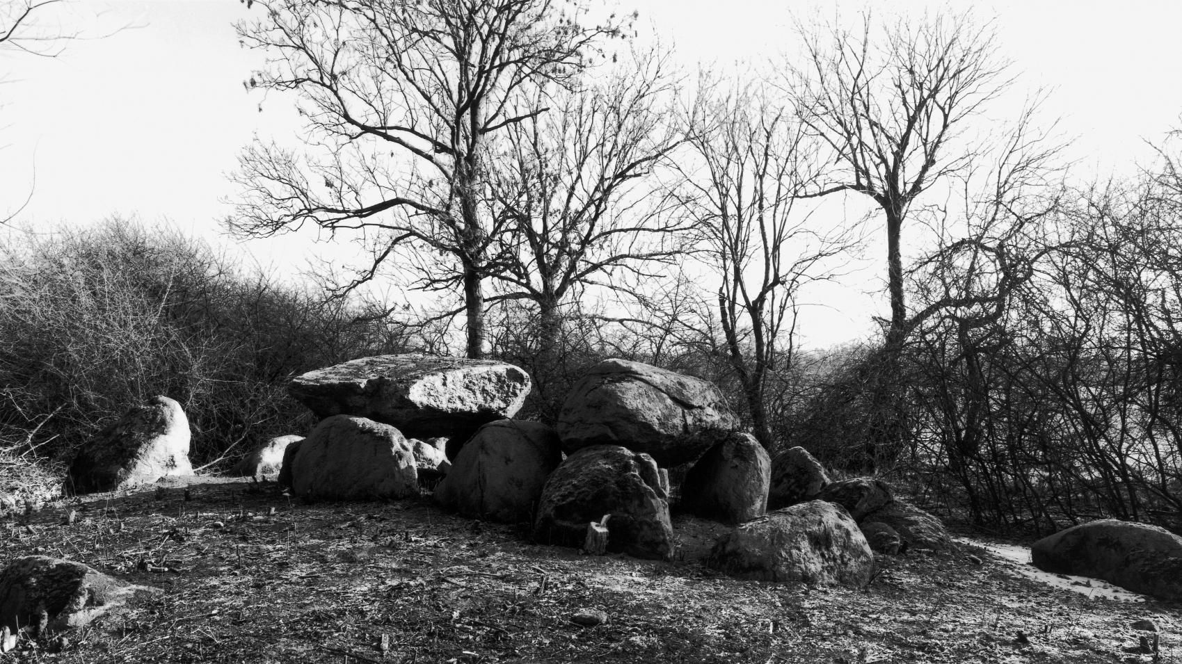 The large dolmen from Bretsch, site 2, in the district of Stendal. © State Office for Heritage Management and Archaeology Saxony-Anhalt, Juraj Lipták.