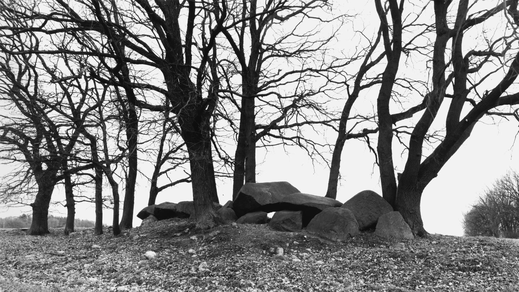 The large dolmen from Bornsen, site 1, in the Altmark district of Salzwedel. © State Office for Heritage Management and Archaeology Saxony-Anhalt, Juraj Lipták.