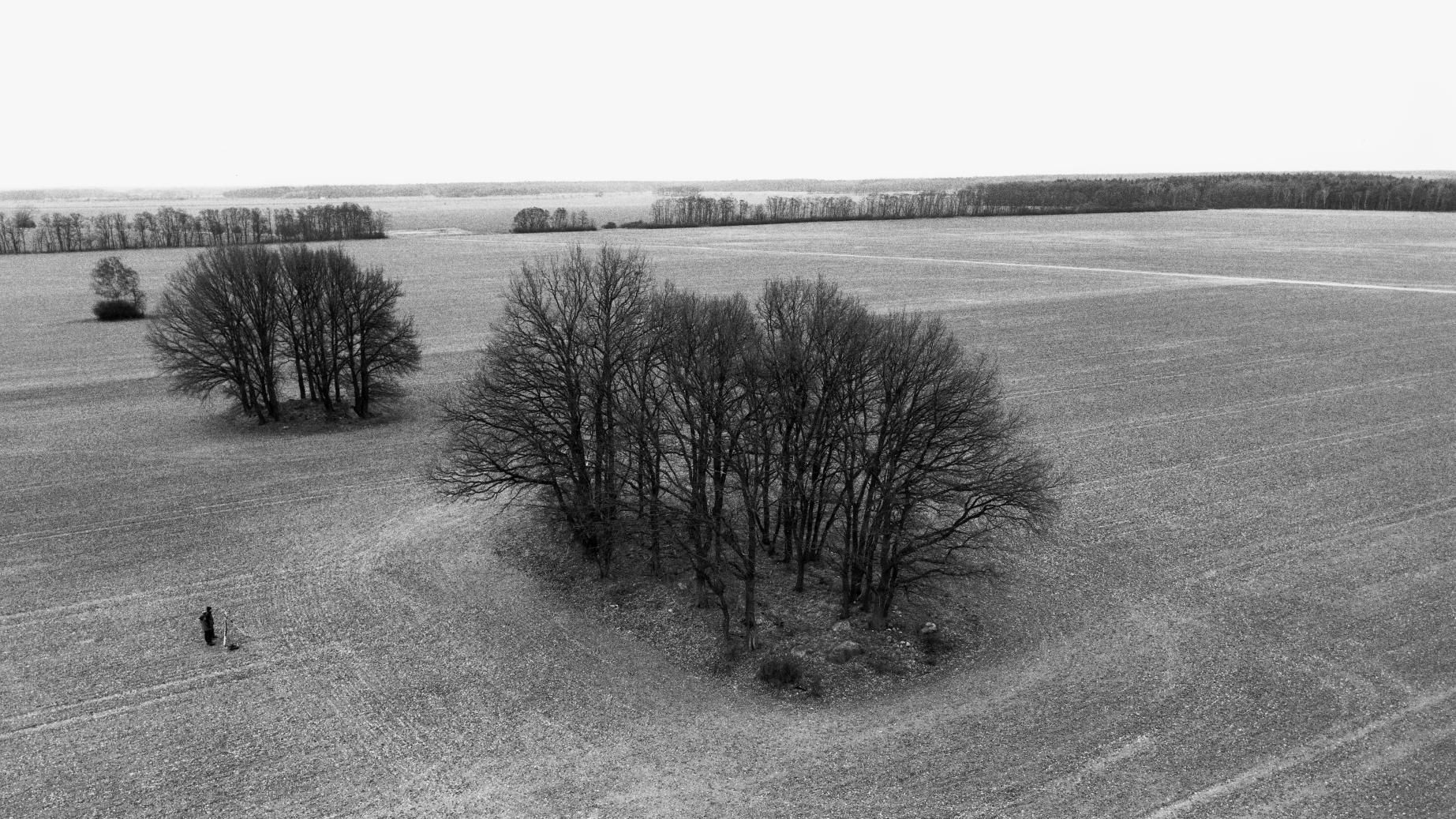 The large dolmens of Leetze, sites 1 to 3, in the Altmarkkreis Salzwedel. © State Office for Heritage Management and Archaeology Saxony-Anhalt, Juraj Lipták.