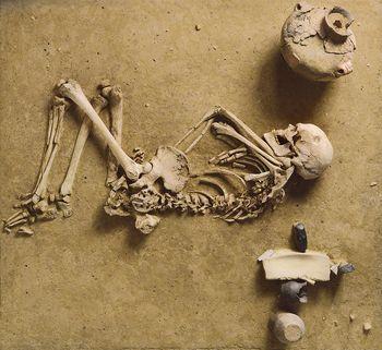 Schnurkeramische Bestattung eines Mannes von Wennungen. © Landesamt für Denkmalpflege und Archäologie Sachsen-Anhalt, Juraj Lipták.