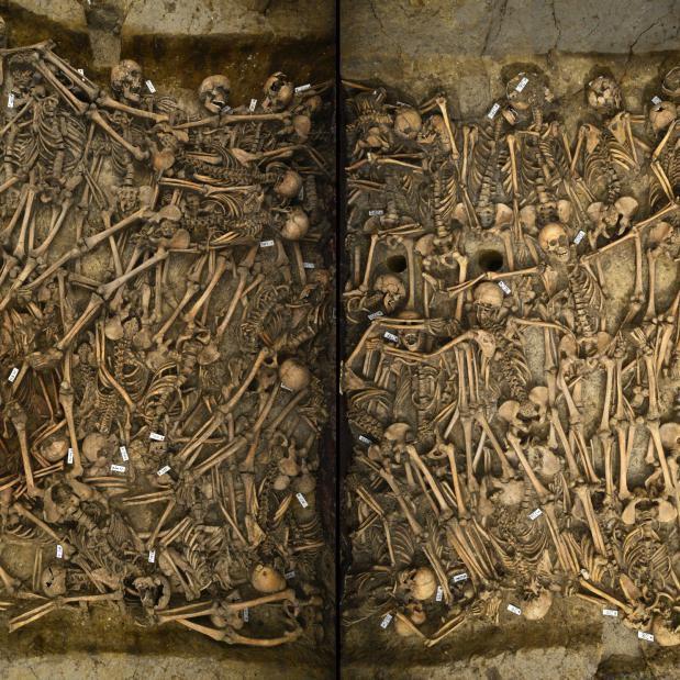 Die ›Ausgrabung im Labor‹ ist abgeschlossen. Der freipräparierte Befund, hier das Massengrab von Lützen, ist in einem exzellenten Zustand. © Landesamt für Denkmalpflege und Archäologie Sachsen-Anhalt, Juraj Lipták.