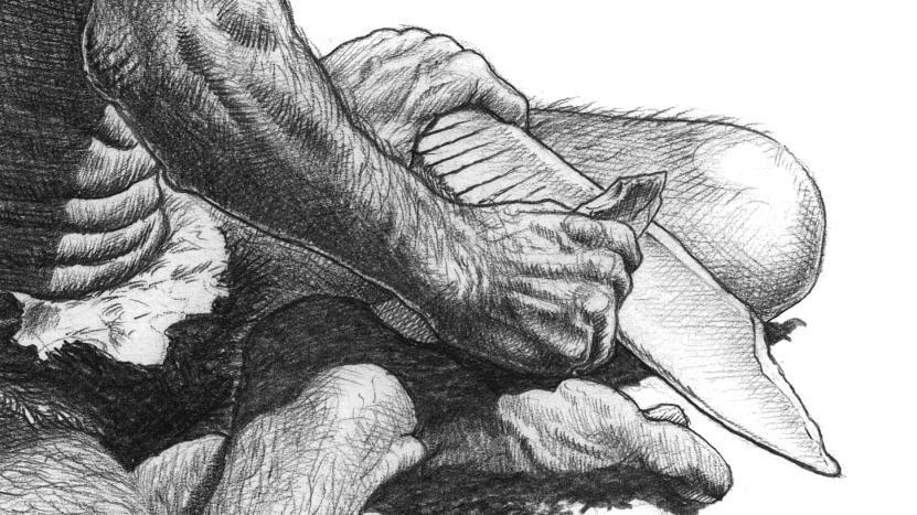 Die rhythmisch angeordneten Linien auf dem Schienbeinsplitter eines Elefanten werden als älteste graphisch-kommunikative Zeichen interpretiert. © Landesamt für Denkmalpflege und Archäologie Sachsen-Anhalt, Karol Schauer.