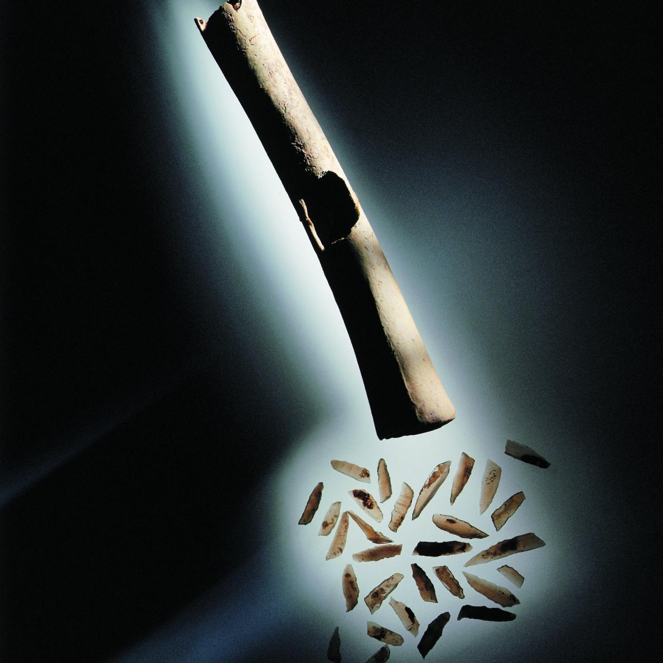 29 Mikrolithen und 2 mikrolithische Abschläge lagen in einem hohlen Kranich-Langknochen, der als Behälter gedient hat und eine seitliche Öffnung aufweist. Mikrolithen sind kleinste, hoch präzise gerabeitete Geräte und Waffenteile aus Feuerstein (Silex). © Landesamt für Denkmalpflege und Archäologie Sachsen-Anhalt, Juraj Lipták.