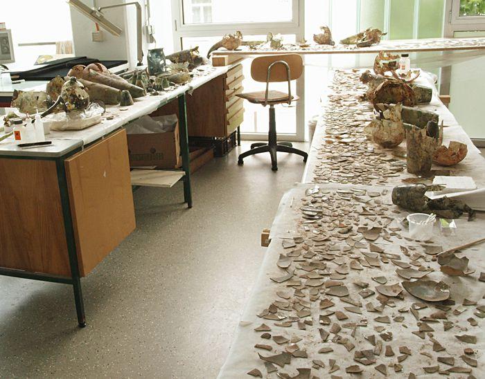 Eine erste Sortierung der vielen Funde ist geschehen. Die Teile sind nach Form, Farbe und weiteren Spuren geordnet. So kann erkannt werden, was vielleicht einmal zusammengehörte. Diese werden zusammengeklebt und die ersten Glasgefäße entstehen wieder aus den Tausenden von Scherben. © Landesamt für Denkmalpflege und Archäologie Sachsen-Anhalt, Vera Keil.